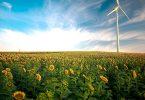 Erzeugung von nicht-fossilen Kraftstoffen
