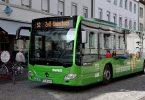 www.sojka.photo
