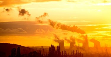 air pollutants from plants and manmade emissions