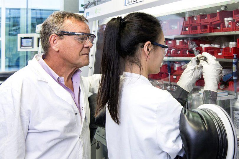 Natrium-Ionen-Batterien der nächsten Generation
