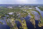 E40 Fluss Pripyat (Belarus) mit seinen Überflutungsflächen