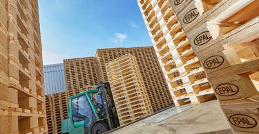 Paletten-Logistik: Steigende Holzpreise sind eine Herausforderung